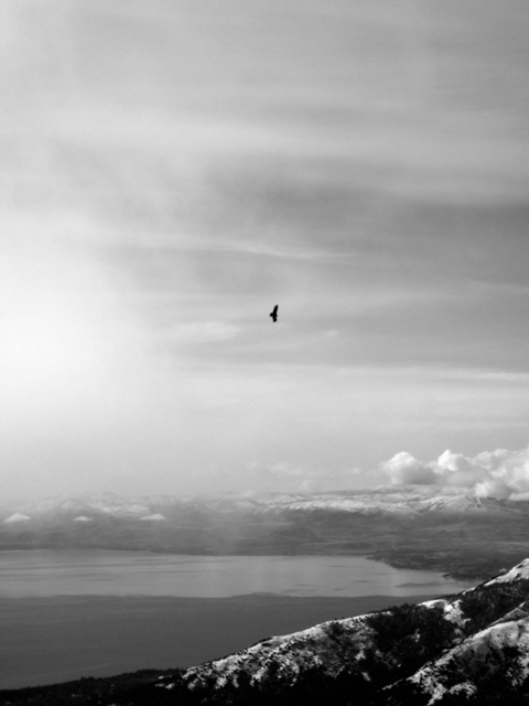Condor, Bariloche, Peak Leaders, Cerro Catedral