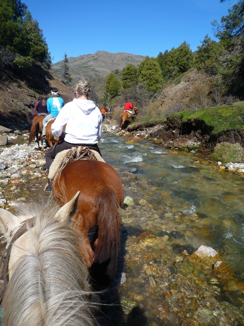 Gaucho, horse riding, Argentina, Bariloche, Peak Leaders